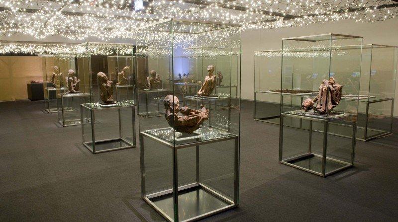 Exposicion momias parque de las ciencias granada
